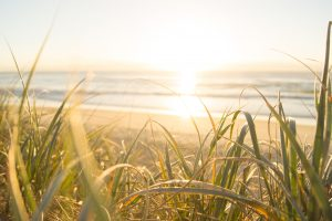 australia-beach-cereal-1089168